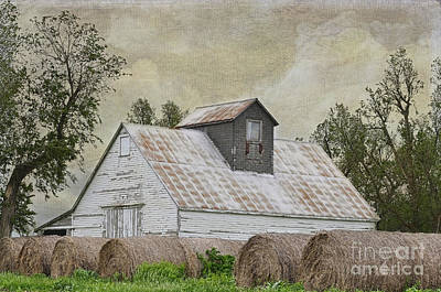 Poster featuring the photograph Nortonville Kansas by Liane Wright
