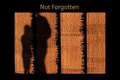 Not Forgotten Poster by Carolyn Marshall