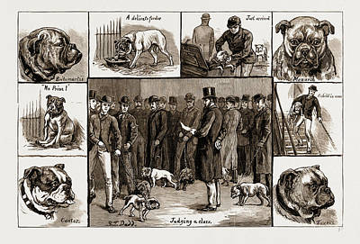 Notes At The Bull Dog Show Poster by Litz Collection