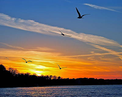 November Sunset Ia Poster by Frozen in Time Fine Art Photography