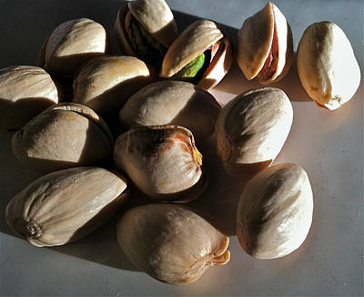 Nuts Poster by Bill Owen
