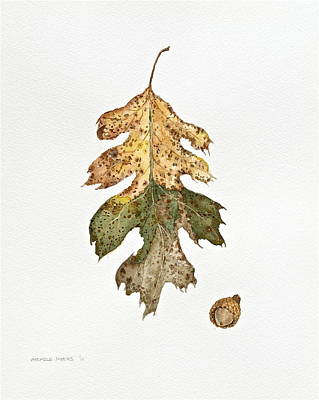 Poster featuring the painting Oak Study by Michele Myers