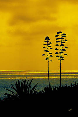 Ocean Sunset With Agave Silhouette Poster by Ben and Raisa Gertsberg