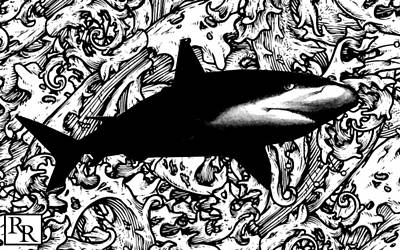 Ocean Surveyor - Prints By Robert Rodriguez Artist Poster