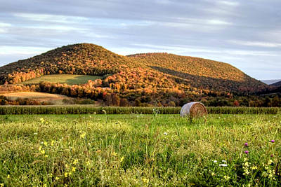 October Wildflowers And Haybale Poster