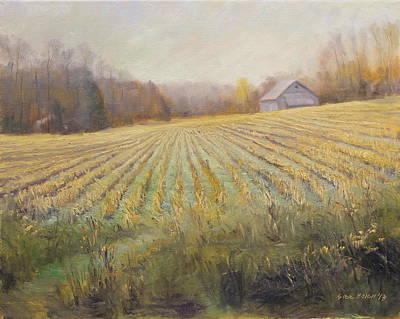 Ohio County Farm Indiana Poster by Steve Haigh