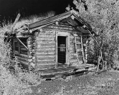 Old Abandoned Cabin Poster by Tlynn Brentnall