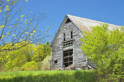 Old Barn In Spring Maine Poster