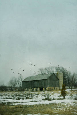 Old Barn In Winter Poster by Jill Battaglia