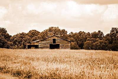 Old Barn Staying Silent  Poster by Jinx Farmer