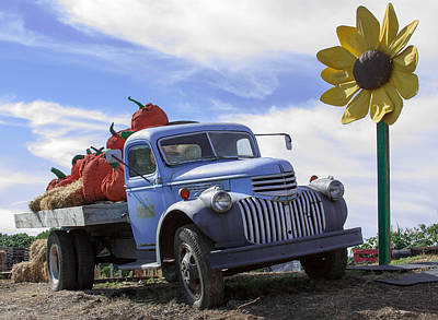 Poster featuring the photograph Old Blue Farm Truck  by Patrice Zinck