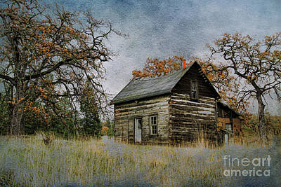 Old Cabin Poster by Steve McKinzie