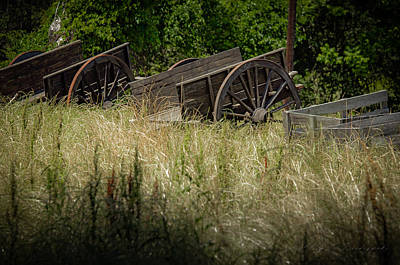 Poster featuring the photograph Old Cotton Bale Wagons by Allen Biedrzycki