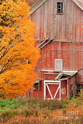 Old Dilapidated Country Barn During Autumn. Poster
