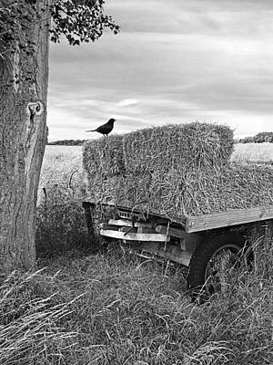 Old Hay Wagon In Black And White Vertical Poster by Gill Billington
