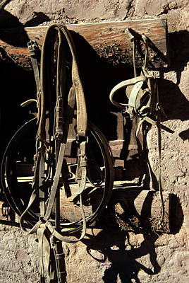 Old Leather Horse Tack Bridle Reins Poster