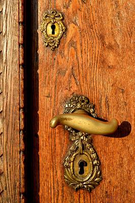 Old Oak Door With Brass Handle And Locks Poster by Ion vincent DAnu