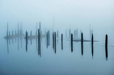 Old Pilings Disappear Into The Mist Poster by Robert L. Potts