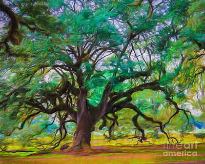 Old Plantation Oak Poster