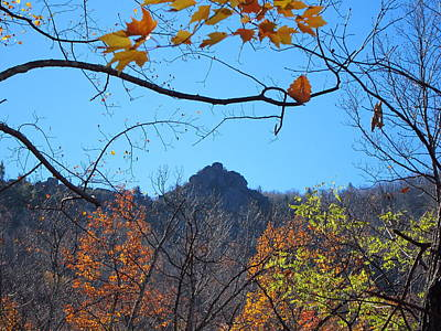 Old Rag Hiking Trail - 121213 Poster by DC Photographer