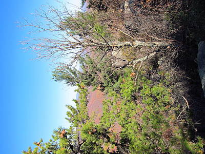 Old Rag Hiking Trail - 121226 Poster by DC Photographer