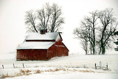 Old Red Barn In An Illinois Snow Storm Poster by Kimberleigh Ladd
