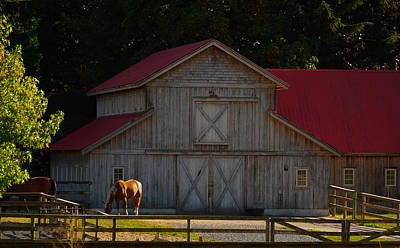 Poster featuring the photograph Old-style Horse Barn by Jordan Blackstone