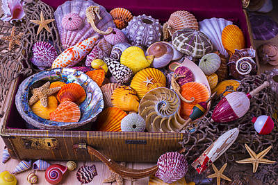 Old Suitcase With Seashells Poster