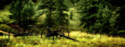 Old Wagon Frame In The Black Hills Poster
