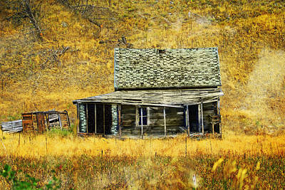 Old Washington Homestead Poster by Marty Koch
