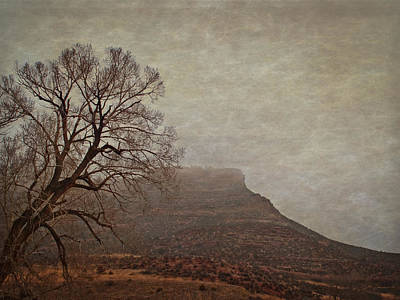 Old West Landscape Fog On The Mesa Poster