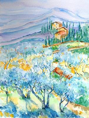Olive Groves Of Cozille Tuscany  Poster by Trudi Doyle