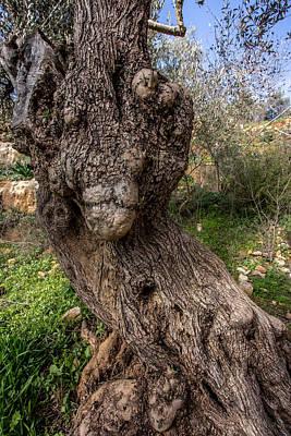 Olive Monster Poster