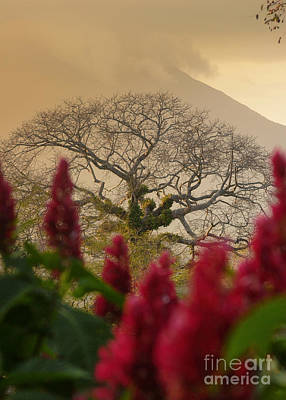 Ometepe Island Nicaragua 4 Poster by Rudi Prott