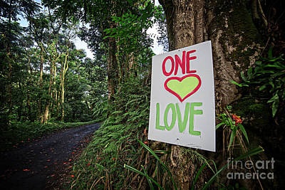 One Love Maui Hawaii Poster by Edward Fielding