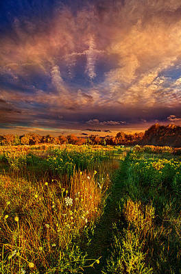 One Step At A Time Poster by Phil Koch