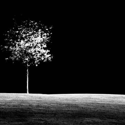 One Tree Hill Poster by Darryl Dalton
