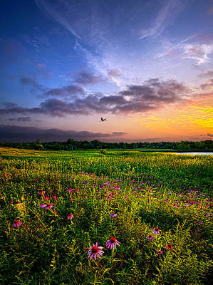 Open Spaces Poster by Phil Koch