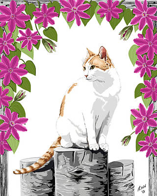 Orange And White Cat And Clematis Poster
