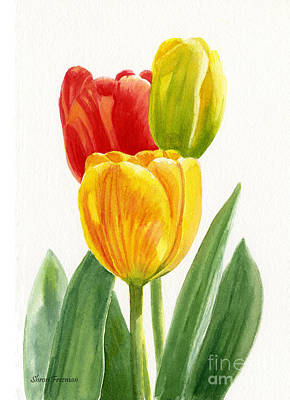 Orange And Yellow Tulips With Bud Poster by Sharon Freeman