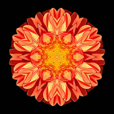 Orange Dahlia Flower Mandala Poster
