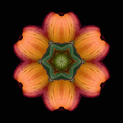 Orange Daylily Flower Mandala Poster