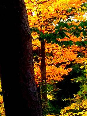 Poster featuring the photograph Orange Foliage by Denyse Duhaime