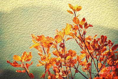Poster featuring the photograph Orange Leaves by Yew Kwang