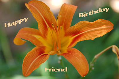 Orange Lily Birthday Poster by Aimee L Maher Photography and Art Visit ALMGallerydotcom