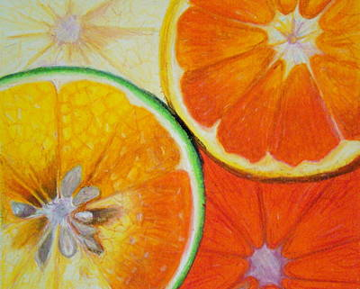 Orange Slices Poster by Caroline  Reid