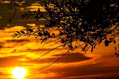 Orange Sunset Poster