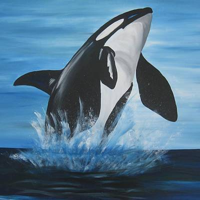 Orca Poster by Cathy Jacobs