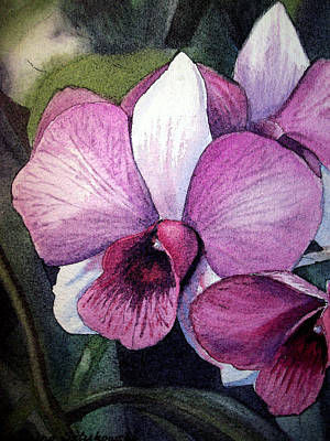Orchid Poster by Irina Sztukowski