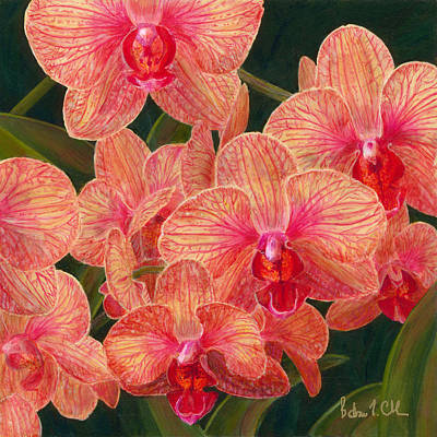 Orchid #5 Poster by Barbara L Clark